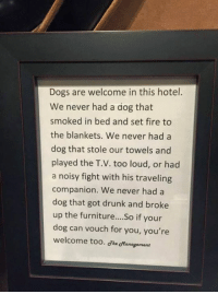 Memes, Smoking, and Furniture: Dogs are welcome in this hotel.  We never had a dog that  smoked in bed and set fire to  the blankets. We never had a  dog that stole our towels and  played the T.V. too loud, or had  a noisy fight with his traveling  companion. We never had a  dog that got drunk and broke  up the furniture... So if your  dog can vouch for you, you're  welcome too. anagement .