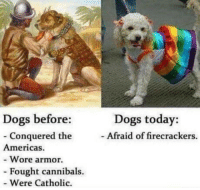 Dogs, Saw, and Library: Dogs before:  Dogs today:  Afraid of firecrackers.  Conquered the  Americas.  - Wore armor.  - Fought cannibals.  - Were Catholic. Saw this in my library, gave me a chuckle.