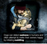 initiation: Dogs can detect sadness in humans and  often attempt to make their owners happy  by initiating cuddling