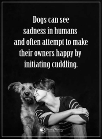 Dogs are just the best friends ever.: Dogs can see  sadness in humans  and often attempt to make  their owners happy by  initiating cuddling. Dogs are just the best friends ever.