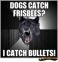 http://www.insanitywolves.com/view/Insanity+Wolf/3432: DOGS CATCH  FRISBEE  I CATCH BULLETS!  estache.comc http://www.insanitywolves.com/view/Insanity+Wolf/3432