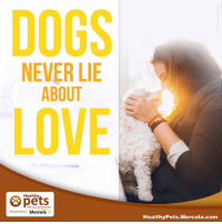 mercola: DOGS  NEVER LIE  ABOUT  LOVE  Healthy  With Dr. Karen Becker  Presented by Mercola  Healthy Pets Mercola.com