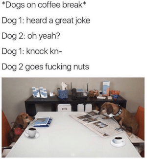 Dogs, Fucking, and Yeah: *Dogs on coffee break*  Dog 1: heard a great joke  Dog 2: oh yeah?  Dog 1: knock kn-  Dog 2 goes fucking nuts