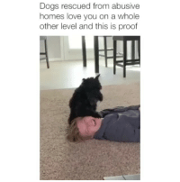 Dogs, Love, and Memes: Dogs rescued from abusive  homes love you on a whole  other level and this is proof My heart is melting 😍 Credit: @aundreadd