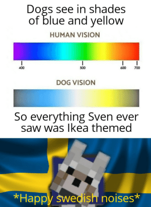 Sven-vision: Dogs see in shades  of blue and yellow  HUMAN VISION  500  400  600  700  DOG VISION  So everything Sven ever  saw was Ikea themed  *Happy swedish noises* Sven-vision