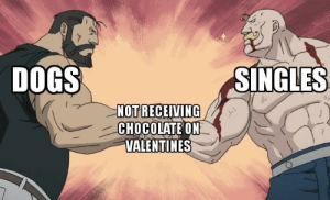 Dank, Dogs, and Memes: DOGS  SINGLES  NOT RECEIVING  CHOCOLATE ON  VALENTINES Happy Valentines Day by liang14032 MORE MEMES