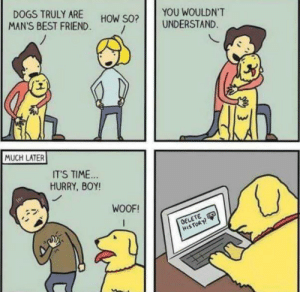 This hurts as a dog person. But it's funny: DOGS TRULY ARE  YOU WOULDN'T  HOW SO?  MAN'S BEST FRIEND  UNDERSTAND  MUCH LATER  IT'S TIME  HURRY, BOY!  WOOF!  OELETE  HISTORY! This hurts as a dog person. But it's funny