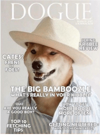 "Memes, News, and Good: DOGUE  PRING  FRISBEE  REVIEW  CATES  FRENS  OR  FOES?  THE BIG BAMBOOZLE  WHAT'S REALLY IN YOUR KİBBLER  OUIZ:  ARE YOU REALLY  A GOOD B0Y?  HOW TO GE  MORE BOOPS  MORE OFTEN  TOP 10  FETCHING  TIPS  GETTING NEUTERED  8  WHAT  TO HECKIN EXPECT <p>Unlike you, I get my news from a credible source via /r/memes <a href=""http://ift.tt/2r4QMXX"">http://ift.tt/2r4QMXX</a></p>"