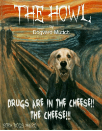 NEW EPISODE #620 THE HOWL ( see comments for classic sofa dog joke version): Dogvard Muttch  DRUGS ARF IN THE CHEESF!  THE CHEESE!!  SORA DOGS NEW EPISODE #620 THE HOWL ( see comments for classic sofa dog joke version)