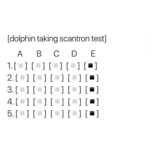 Probably would do better than me on the scantron anyways: [dolphin taking scantron test]  A B  D E  1. [  2. [  3. [  4. [  5. [  [] []  ]  [  ][] [  [] [ Probably would do better than me on the scantron anyways