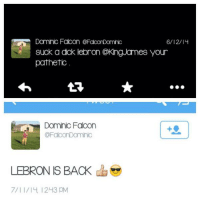 Memes, 🤖, and King James: Dominic Falcon CFacorDomnic  6/12/l4  Suck a dok lebron @King James your  pathetic  Dominic Falcon  a FaconDominic  LEBRON IS BACK  a  7/II/I4 12 43 pM A real fan