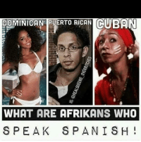 puerto rican: DOMINICAN PUERTO RICAN CUBAN  WHAT ARE AFRIKANS WHO  SPEAK SPANISH