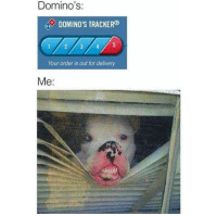 Memes, Domino's, and Dominoes: Domino's:  DOMINO'S TRACKER  Your order is out for delivery  Me -