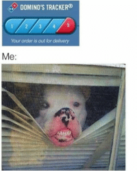 Domino's, Dominoes, and Dank Memes: DOMINO'S TRACKER@  Your order is out for delivery  Me. @bonkers4memes