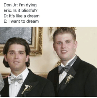 A Dream, Memes, and 🤖: Don Jr: I'm dying  Eric: Is it blissful?  D: It's like a dream  E: I want to dream ☺️💤☁️ OC