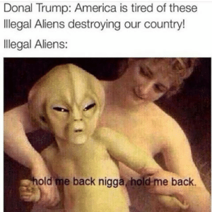 Donal Trump: Donal Trump: America is tired of these  llegal Aliens destroying our country!  llegal Aliens:  old me back nigga hold-me back.