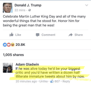 For Honor: Donald J. Trump  22 mins  Celebrate Martin Luther King Day and all of the many  wonderful things that he stood for. Honor him for  being the great man that he was!  Like  Commen  Share  20.8K  1,005 shares  Adam Gladwin  If he was alive today he'd be your biggest  critic and you'd have written a dozen half  illiterate immature tweets about him by now.  20 minutes ago Unlike 607 Reply