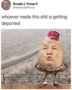 True that via /r/memes http://bit.ly/2uTrH3e: Donald J. Trump  @realDonaldTrump  whoever made this shit is getting  deported  AAR AN  OATAGA True that via /r/memes http://bit.ly/2uTrH3e