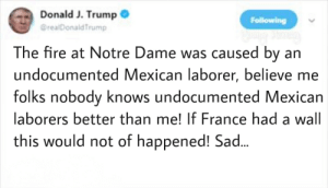 Fire, France, and Notre Dame: Donald J. Trump0  DrealDonaldTrump  The fire at Notre Dame was caused by an  undocumented Mexican laborer, believe me  folks nobody knows undocumented Mexican  aborers better than me! If France had a wall  this would not of happened! Sad Build that wall!