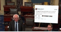 "Memes, Http, and Wings: Donald J. Trumpo  Follow  According to all known laws of aviation, there is no way a bee  should be able to fly. Its wings are too small to get ts fat little  body off the ground.... <p>Bernie senate tweet memes rising! Invest! via /r/MemeEconomy <a href=""http://ift.tt/2hXGctW"">http://ift.tt/2hXGctW</a></p>"