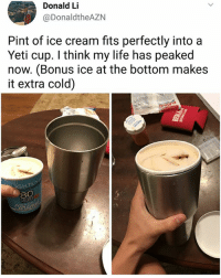 Life, Memes, and Ice Cream: Donald Li  @DonaldtheAZN  Pint of ice cream fits perfectly into a  Yeti cup. I think my life has peaked  now. (Bonus ice at the bottom makes  it extra cold)  GHT  SEA I've never been so satisfied. | Follow @aranjevi for more!