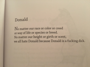 pixelephant: this old bo burnham poem is oddly appropriate in 2016: Donald  No matter our race or color or creed  or way of life or species or breed  No matter our height or girth or scent,  we all hate Donald because Donald is a fucking dick. pixelephant: this old bo burnham poem is oddly appropriate in 2016