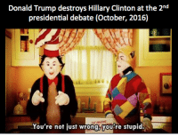 Dank, Donald Trump, and Hillary Clinton: Donald Trump destroys Hillary Clinton at the 2nd  presidential debate (October, 2016)  HE AMATTING  You're not just wrong,you're stupid. <p>Make Memes Dank Again</p>