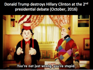 Dank, Donald Trump, and Hillary Clinton: Donald Trump destroys Hillary Clinton at the 2nd  presidential debate (October, 2016)  HE AMATTING  You're not just wrong,you're stupid. Make Memes Dank Again