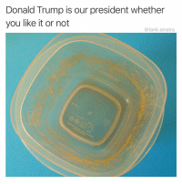 Donald Trump, Funny, and Meme: Donald Trump is our president whether  you like it or not  @tank.sinatra I feel like you gotta be pretty heavily invested in the meme game to get this one