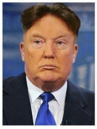 Donald Trump + Kim Jong-un = Louis van Gaal https://t.co/yX29T5XAiV: Donald Trump + Kim Jong-un = Louis van Gaal https://t.co/yX29T5XAiV
