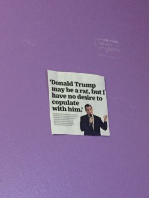asslion:i keep this quote on my bedroom wall so i dont forget about it. why did we let ted cruz forget about this anyways? why didnt we, as a society, make more fuss about this quote? im haunted by it daily since tedward cruz looks down upon me every night calling himself a rat fucker and NO ONE CARED we just let him SAY IT: Donald Trump  may be arat, butI  have no desire to  copulate  with him asslion:i keep this quote on my bedroom wall so i dont forget about it. why did we let ted cruz forget about this anyways? why didnt we, as a society, make more fuss about this quote? im haunted by it daily since tedward cruz looks down upon me every night calling himself a rat fucker and NO ONE CARED we just let him SAY IT