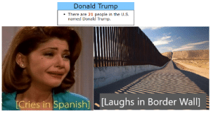Take that liberals.: Donald Trump  There are 21 people in the U.S.  named Donald Trump.  Laughs in Border Wall]  [Cries in Spanish] Take that liberals.
