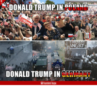 """Cars, Memes, and Shit: DONALD TRUMPINOLAND  are  NGRY  DLICH ODER  2945-664  POLIZE  R2 2  HH 4  DONALD TRUMPINY  kamieni kupa Germany: """"Thousands of lefty hooligans, cannons, gas, armored cars, 76 wounded cops, flying stones and bottles, general shit on the streets."""""""
