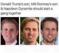 Blackpeopletwitter, Napoleon Dynamite, and Gang: Donald Trump's son, Mitt Romney's son  & Napoleon Dynamite should start a  gang together  ID <p>Purge All Stars (via /r/BlackPeopleTwitter)</p>