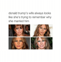 y: donald trump's wife always looks  like she's trying to remember why  she married him y