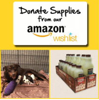 Amazon, Beautiful, and Family: Donate Supplies  om ouY  amazon  wshlist PLEASE DONATE MUCH NEEDED SUPPLIES FOR SWEET SANDY AND HER PUPS🙏🐾  You can purchase any needed supplies from their personal Amazon Wishlist here: https://www.amazon.com/hz/wishlist/ls/5C5YE7H6Q7ZC  ➡️ All items purchased from their Amazon Wishlist will automatically ship directly to their rockstar Foster Parents Jenn @doggirl110 and Jay @jombie626  ➡️ You can also purchase these items elsewhere and ship to or drop off at  The Soapy Dog 826 E.Jericho Turnpike Huntington Station, NY 11746   Saved from Miami Dade Animal Shelter, Sandy was at risk since she was at a high kill shelter, both pregnant and with a broken leg. NYBC committed to Mama Sandy and she was rescued with the help of South Fl Animal Rescue Network @sfarninc and @miami_k_nines   Sandy made her way up to NY and gave birth here in her loving foster home to 8 healthy beautiful babies! Please help make Jenn and Jay's job of caring for this sweet momma and her new precious family a little easier by purchasing some of these much needed items from their Wish List. Thank you!!  **note: The Primal Pet Raw Goat's Milk arrives frozen and is NOT available on Amazon but can be purchased locally for anyone interested at Pet Supplies Plus, Pets Warehouse and Pet Valu. Thank you🙏🐾  #sandynybc #sandyandpupswishlist #amazonwishlist #fosteringsaveslives #nybcfam #nybcfosters #nybc #newyorkbullycrew