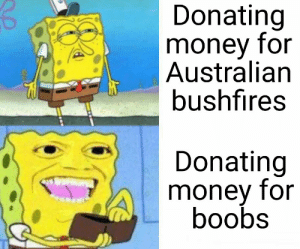 This is why we can't have nice things.: Donating  money for  Australian  bushfires  Donating  money for  boobs This is why we can't have nice things.