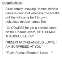 """Memes, Michelangelo, and Sirius: dongofachilles  Sirius totally knowing Remus' middle  name is John but whenever he breaks  out the full name he'll throw in  ridiculous middle names like  """"Of COURSE he got a perfect score  on the Charms exam, HE'S REMUS  THADDEUS LUPIN""""  """"REMUS MICHELANGELO LUPIN, I  AM SURPRISED AT YOU""""  """"Fuck, Remus Elizabeth Lupin ~Dobby"""
