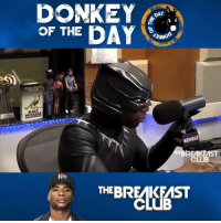 """Charlemagne gives StephenASmith 'Donkey Of The Day' for saying """"White people will be reminded of TrayvonMartin if they see NBA players on the bench wearing hoodies""""...thoughts? @BreakfastClubAM WSHH: DONKE  OF THE DAY  DAY  CHARLAMMI  BLACK  REVOLT  CLUB  THEBREAKFAST Charlemagne gives StephenASmith 'Donkey Of The Day' for saying """"White people will be reminded of TrayvonMartin if they see NBA players on the bench wearing hoodies""""...thoughts? @BreakfastClubAM WSHH"""