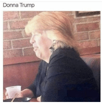 Follow @trumpmeetstheinternet for the funniest trump memes: Donna Trump Follow @trumpmeetstheinternet for the funniest trump memes