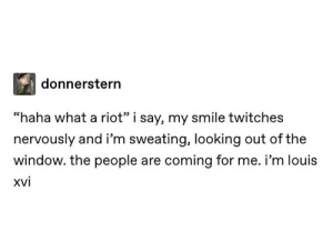 """Riot, Smile, and Haha: donnerstern  """"haha what a riot"""" i say, my smile twitches  nervously and i'm sweating, looking out of the  window. the people are coming for me. i'm louis  xvi"""