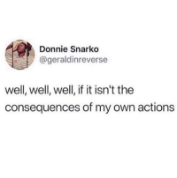 Memes, Single, and 🤖: Donnie Snarko  @geraldinreverse  well, well, well, if it isn't the  consequences of my own actions I don't wanna see you here consequences 😩🙋🏽‍♀️💀(geraldinreverse via @insta.single)