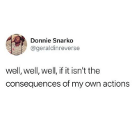 Funny, Tumblr, and Own: Donnie Snarko  @geraldinreverse  well, well, well, if it isn't the  consequences of my own actions