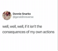 MeIRL, Own, and Well: Donnie Snarko  @geraldinreverse  well, well, well, if it isn't the  consequences of my own actions meirl