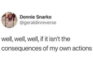 Dank, Memes, and Target: Donnie Snarko  @geraldinreverse  well, well, well, if it isn't the  consequences of my own actions meirl by OleGravyPacket MORE MEMES