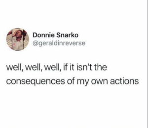 Dank, Memes, and Target: Donnie Snarko  @geraldinreverse  well, well, well, if it isn't the  consequences of my own actions meirl by biggiecheese65 MORE MEMES