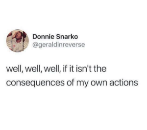Dank, Memes, and Target: Donnie Snarko  @geraldinreverse  well, well, well, if it isn't the  consequences of my own actions Meirl by Bennybooboo226 MORE MEMES