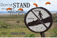 "<p>[<a href=""https://www.reddit.com/r/surrealmemes/comments/7nravm/respect_watch_for_they_deter_the_croissanntians/"">Src</a>]</p>: Don'ot STAND  haH  WATCHERS  ouchie  They Observe  the  waters of life <p>[<a href=""https://www.reddit.com/r/surrealmemes/comments/7nravm/respect_watch_for_they_deter_the_croissanntians/"">Src</a>]</p>"