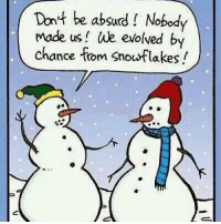 Memes, Evolve, and Absurd: Don't be absurd Nobody  Made us We evolved by  chance from Snowflakes Good memes for this snowy time of year. 😁😇  ~TBIRD