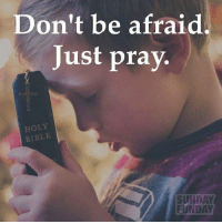 Follow: 👉 @active_faith101👈 God Jesus HolySpirit Jehova Lord Christ Bless memes sunday Somebody churchmemes memehistory Life Love My Yes Blessed instagood Bible GodBlessYou me Amazing mercy tbt You I live amen: Don't be afraid  Just pray.  HOLY  BIBLE  SUNDAY  FUNDAY Follow: 👉 @active_faith101👈 God Jesus HolySpirit Jehova Lord Christ Bless memes sunday Somebody churchmemes memehistory Life Love My Yes Blessed instagood Bible GodBlessYou me Amazing mercy tbt You I live amen